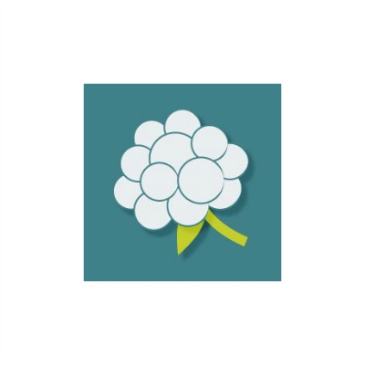 Cloudberry-Pursuits