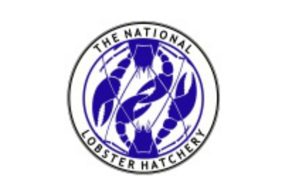 Nationa-Lobster-Hatchery-1