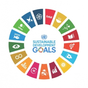 Sustainable Development Goals wheel icon