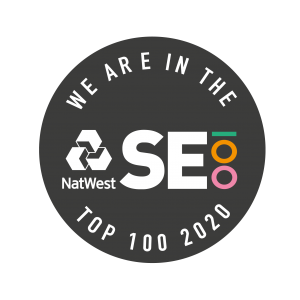 SE100 badge - top 100 social enterprises in 2020