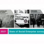 State of Social Enterprise survey