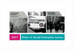 State of Social Enterprise survey