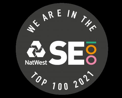 SE100 index badge 2021